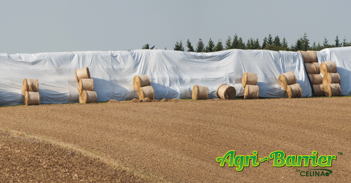 march-hay-tarps-for-sale.jpg