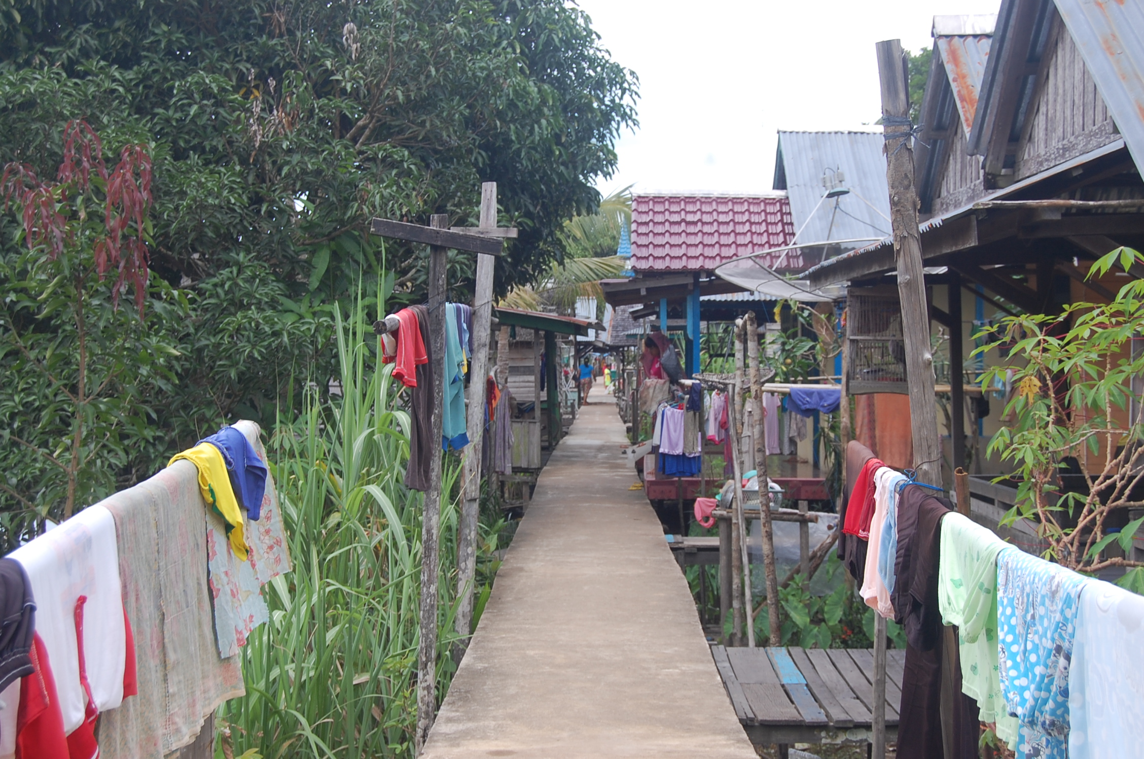 The target village of the Friendly Forest Initiative, Pulau Limbung