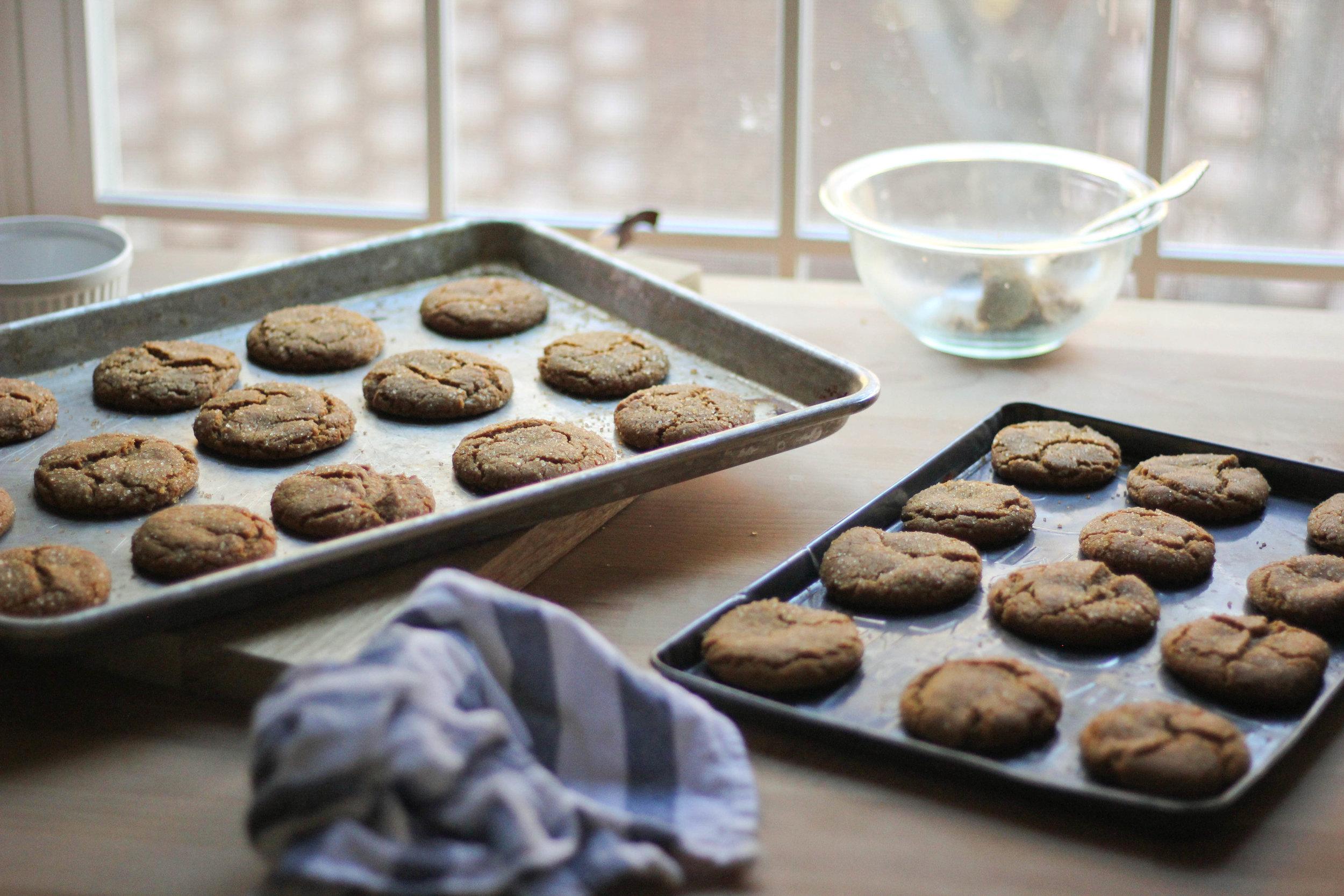 Molasses-Cookies-3-1-of-1.jpg