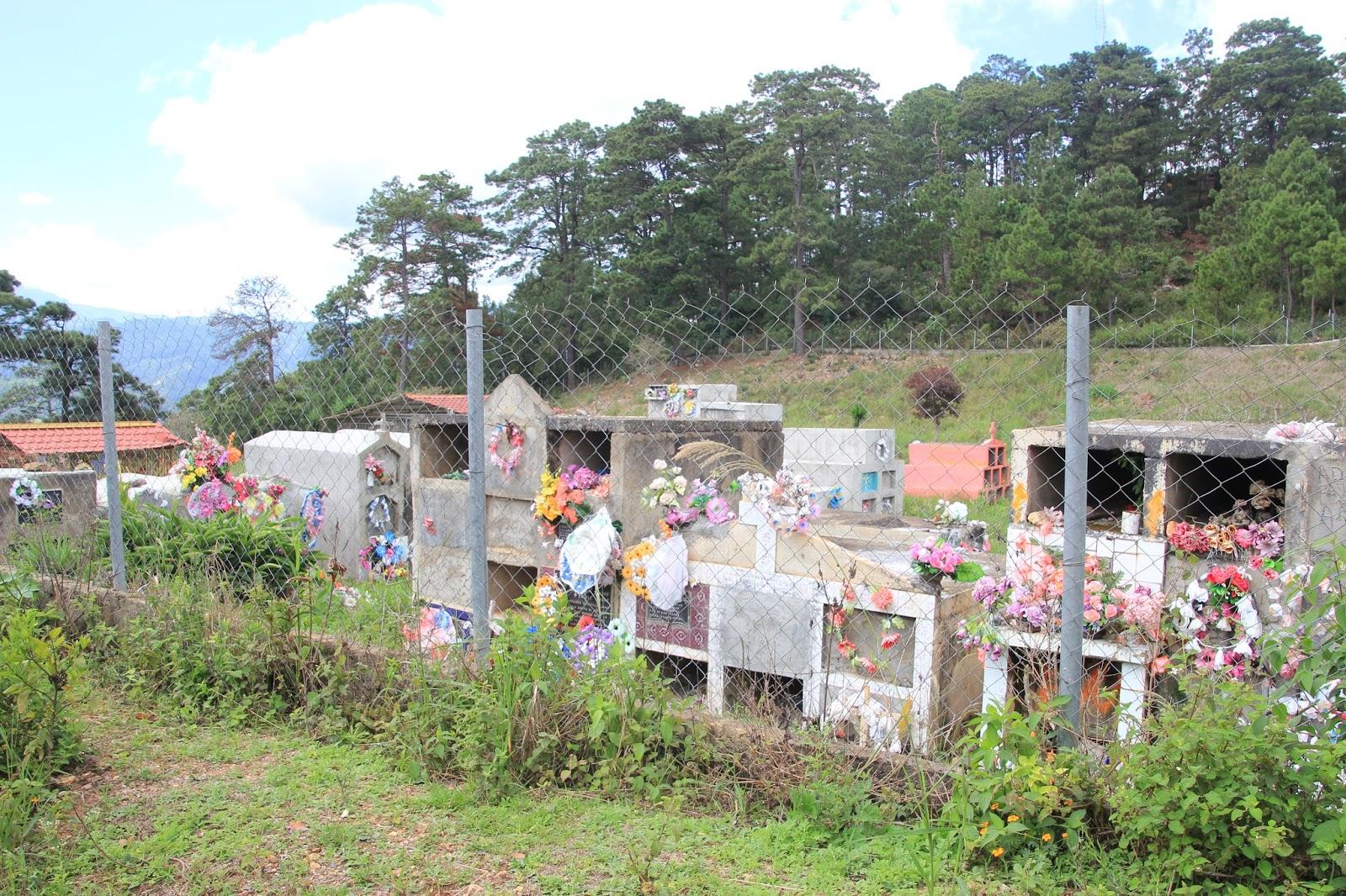 Photo caption: Community cemetery