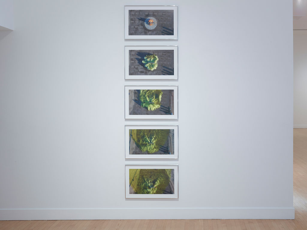 David-Maisel-Proving-Ground-Installation-7.jpg