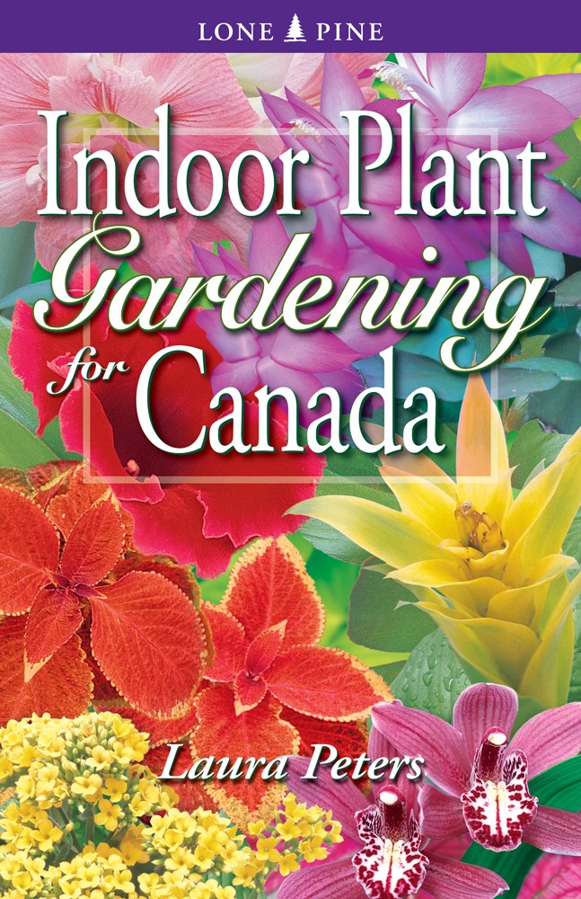 pbs-1-indoorplantsforcanada.jpeg