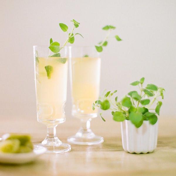 Oregano Garnish on Cocktail Drinks