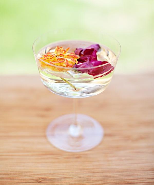Floral Champagne Cocktails