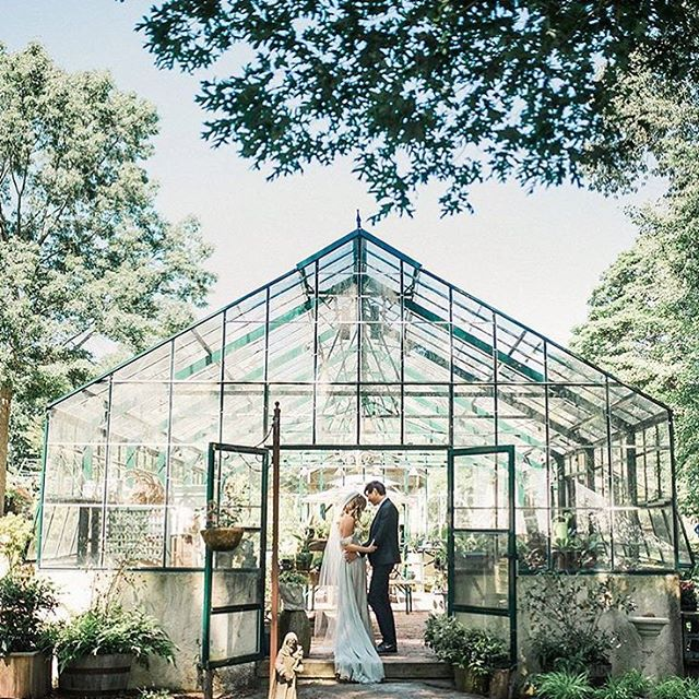Are you looking for a beautiful greenhouse venue for your wedding? This one is stunning! We love how pretty they can look! ✨ We've chosen our favorite greenhouses for you to explore on our blog. Link is in our profile. Inspiration via @ryanflynnphoto . . . #bohowedding #wedding #weddingvenue #greenhouse #brideandgroom #rusticwedding #pretty #weddingphotography #weddinginspiration #weddingblog #follow #thebohemianwedding