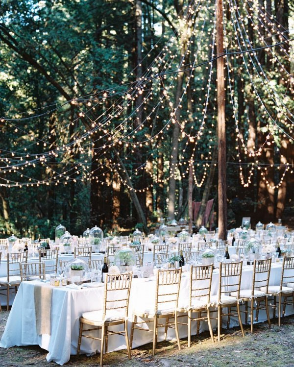 Table Setting with Fairy Lights