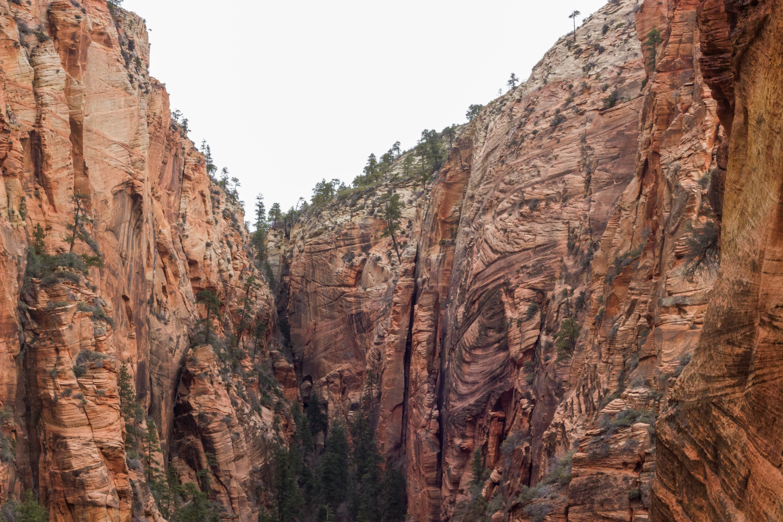 The Angels Landing trail gives hikers a scenic view of the mountains of Zion National Park in Hurricane, Utah Wednesday morning. (Photo by Gretchen Burnton)