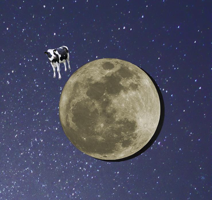 moonimage.jpg