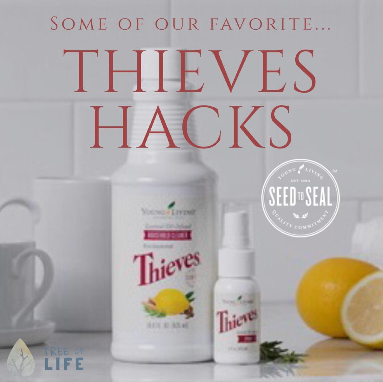 ThievesHacks.jpg