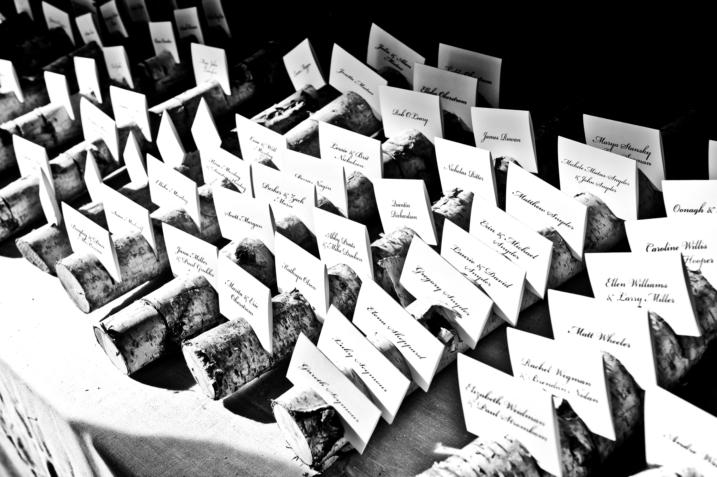Escort Cards in Log Holders