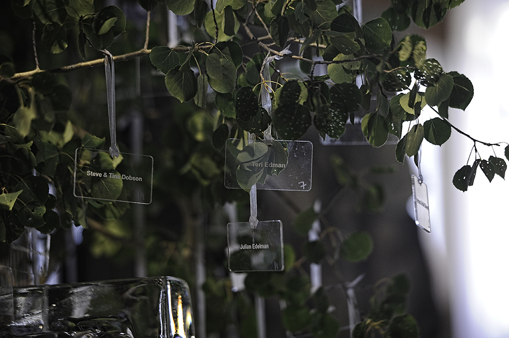 Lucite Placecards Hanging from Aspen Tree
