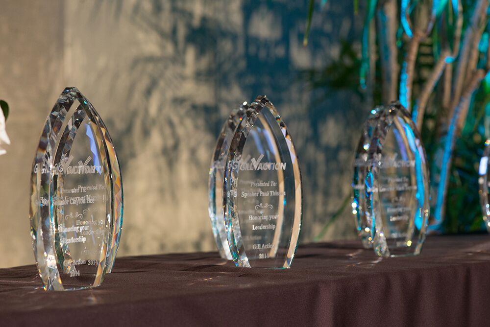 Gill Action Awards