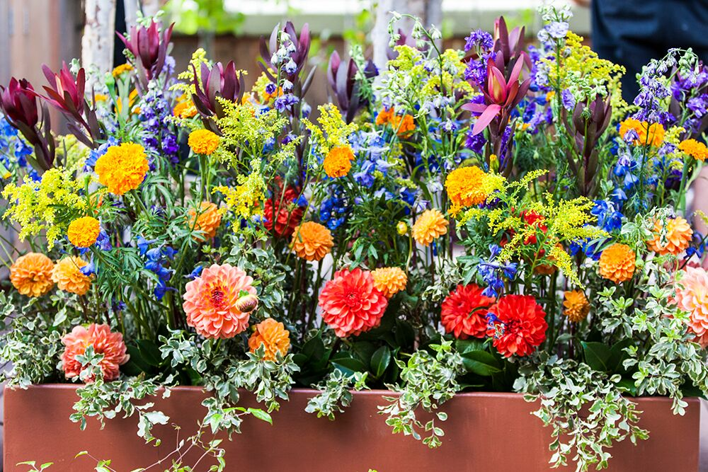 Bright summer flower arrangement