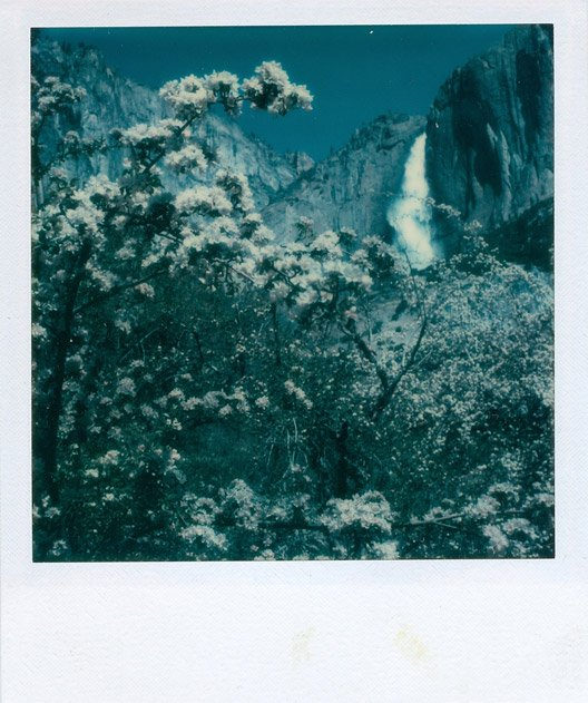 Ansel Adams worked closely with Polaroid inventor Edwin Land for decades. Land hired Adams to test out his cameras and film and offer professional feedback.