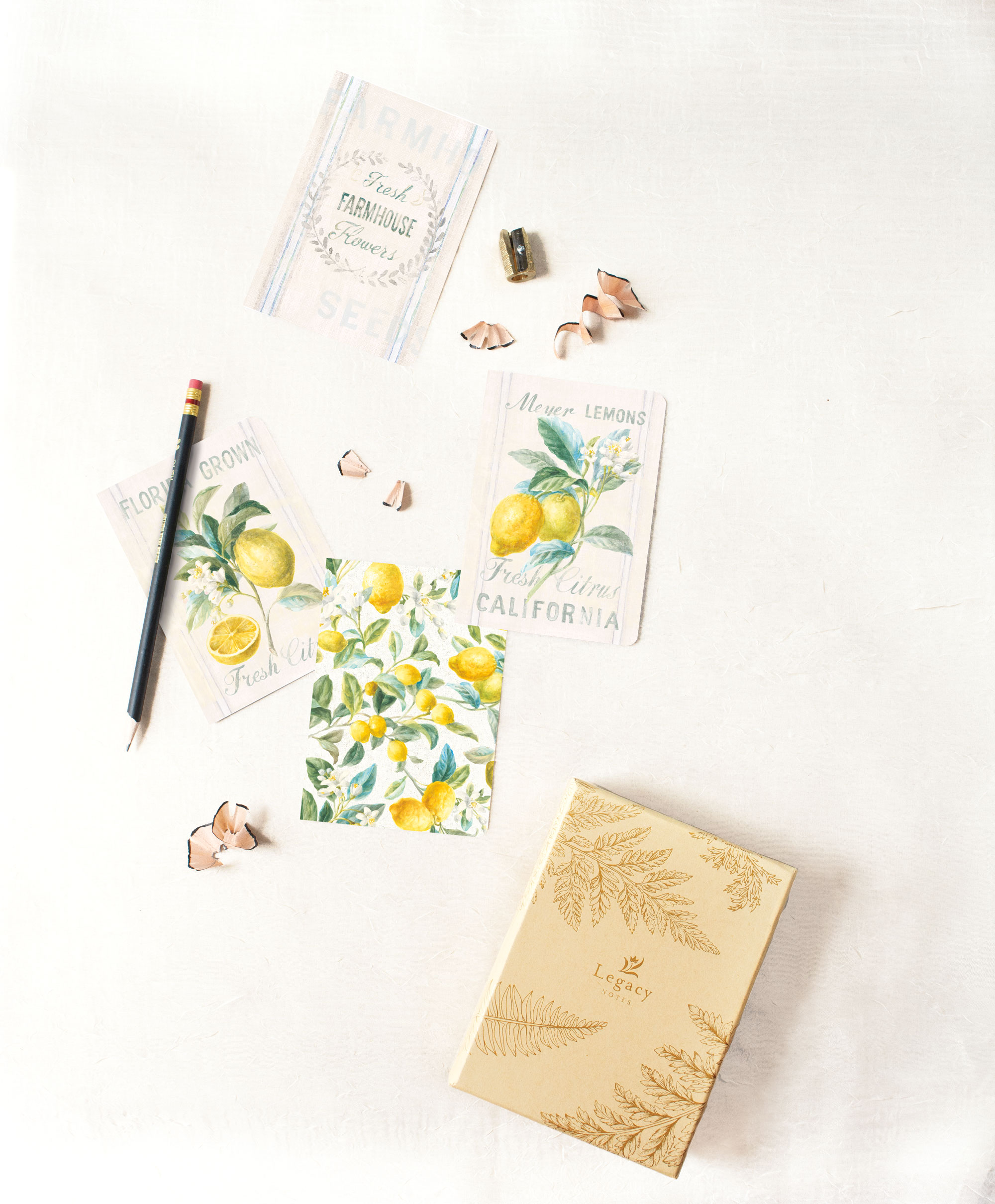 Legacy Note Card Set — Product Development/Package Design/Design  Artwork: Danhui Nai | Photography: Shanleigh Heelan