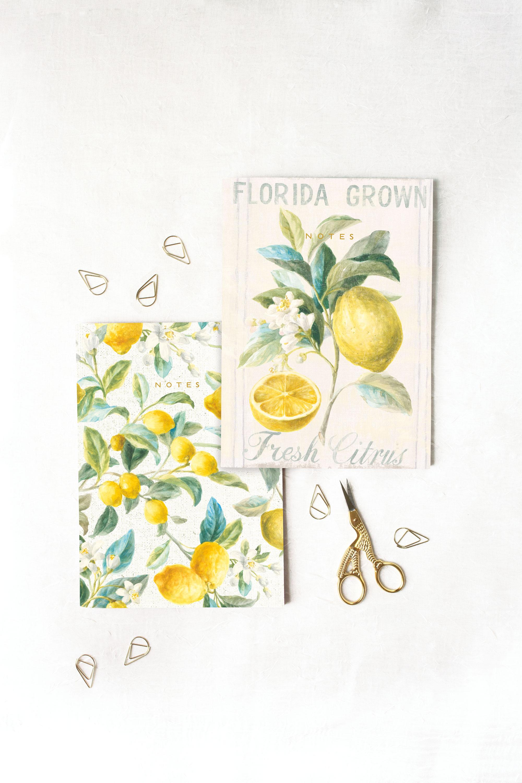 Legacy Notebook Set — Product Development/Design  Artwork: Danhui Nai | Photography: Shanleigh Heelan