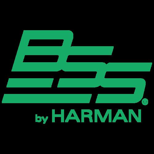 BSS-Logo-Green.png