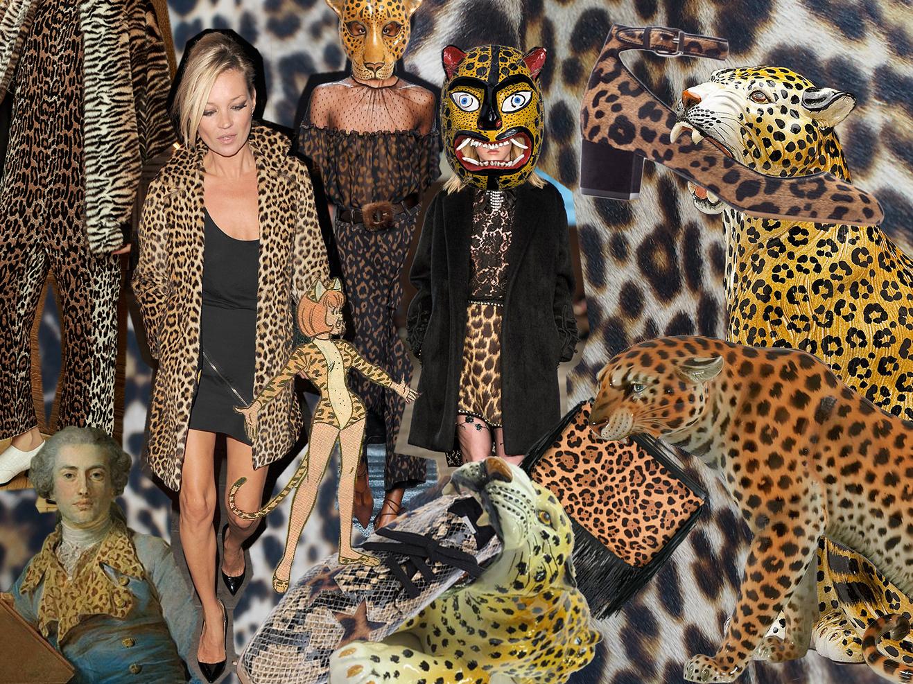 leopard-collage.jpg