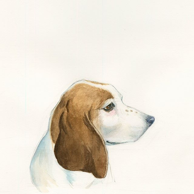 Did a little painting of Cooper this morning. My brother's dog, our family's dog, who we had to say goodbye to yesterday. Gonna miss you to pieces brother. Thanks for all the snuggles even tho you took up like the entire bed.