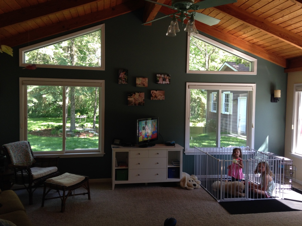 """For the record, we don't routinely cage our children...they are just hanging out with their new puppy! This was the day their playroom officially became """"Welker's Room."""""""