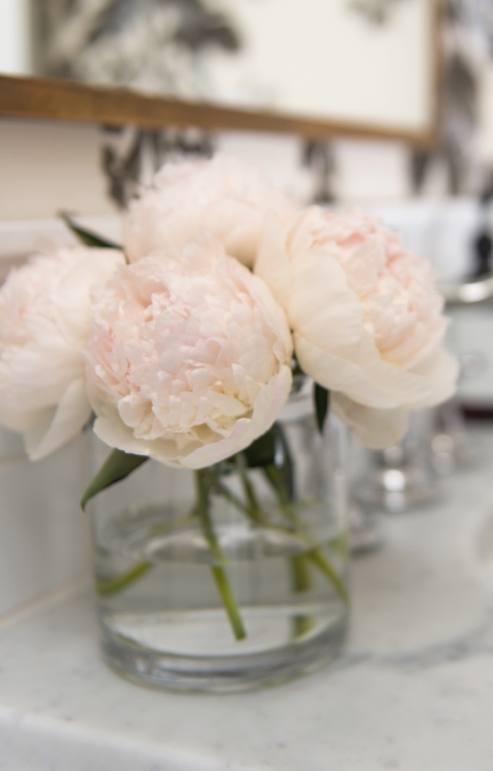 Blush Pink Peonies, Powder Room Design by Laura Design Co.