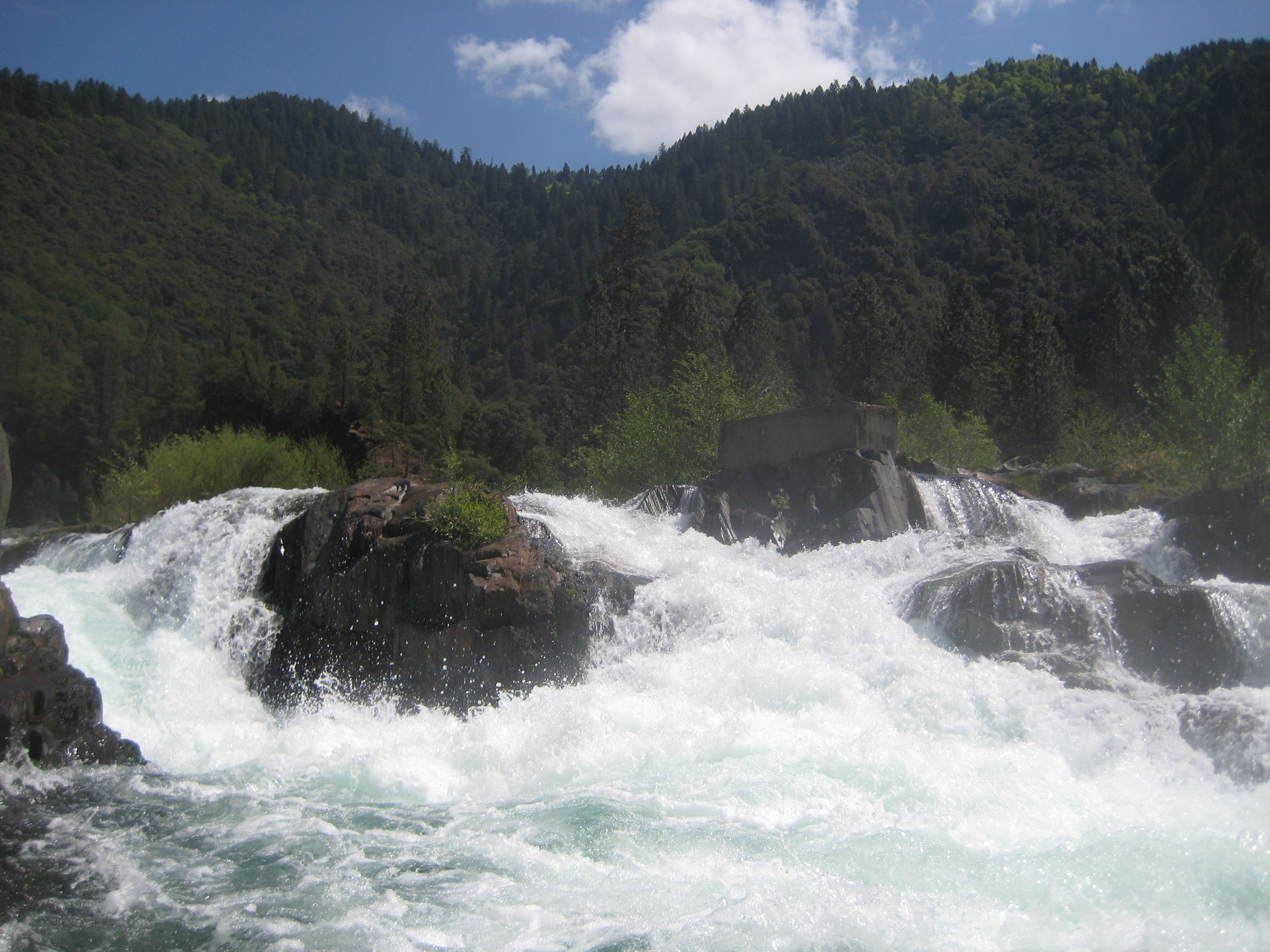 Middle Fork American River - Adventurous beginner to intermediate (class IV) full-day rafting trips in the foot hills of the Central Sierras.