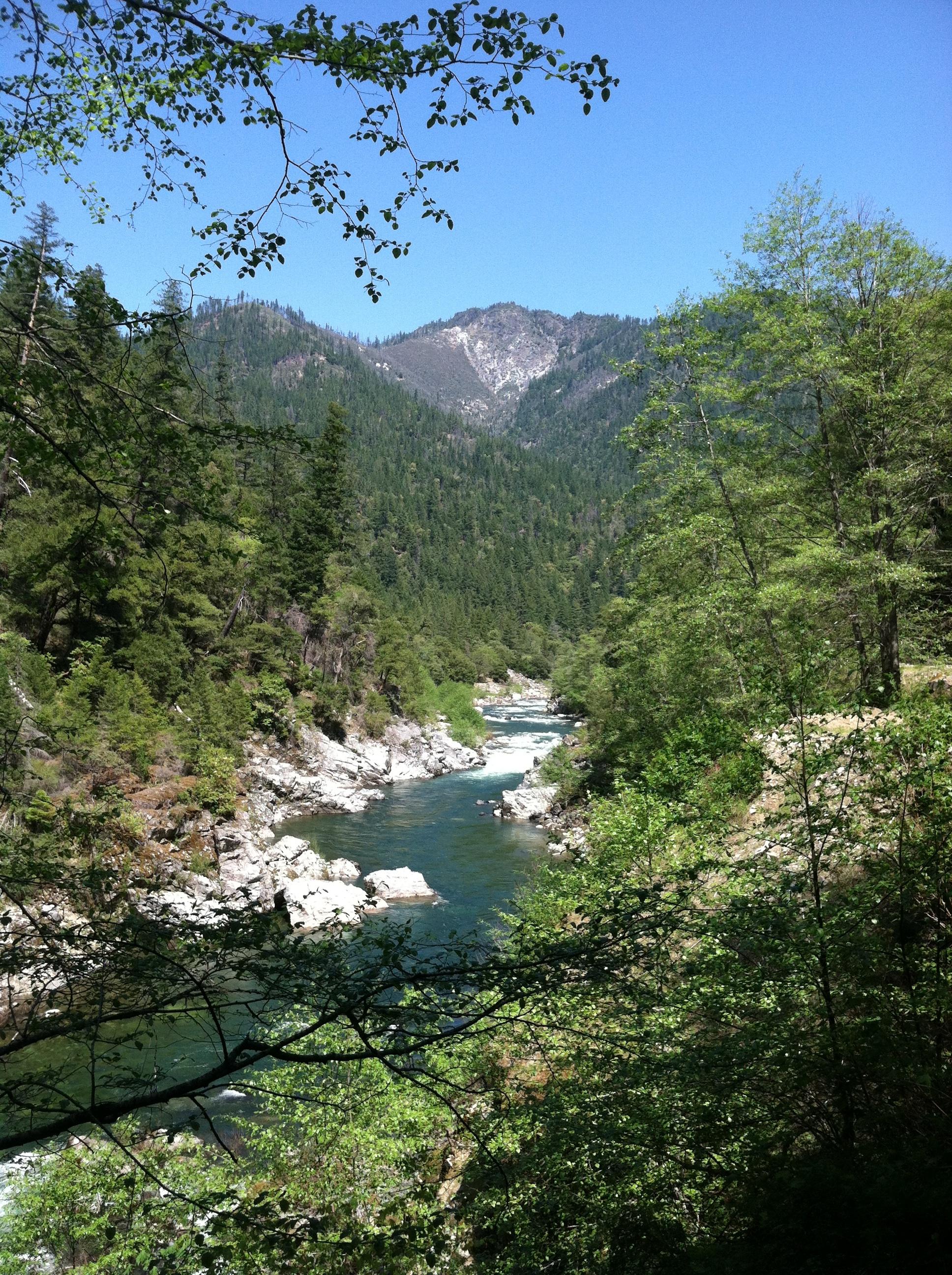 California Salmon River