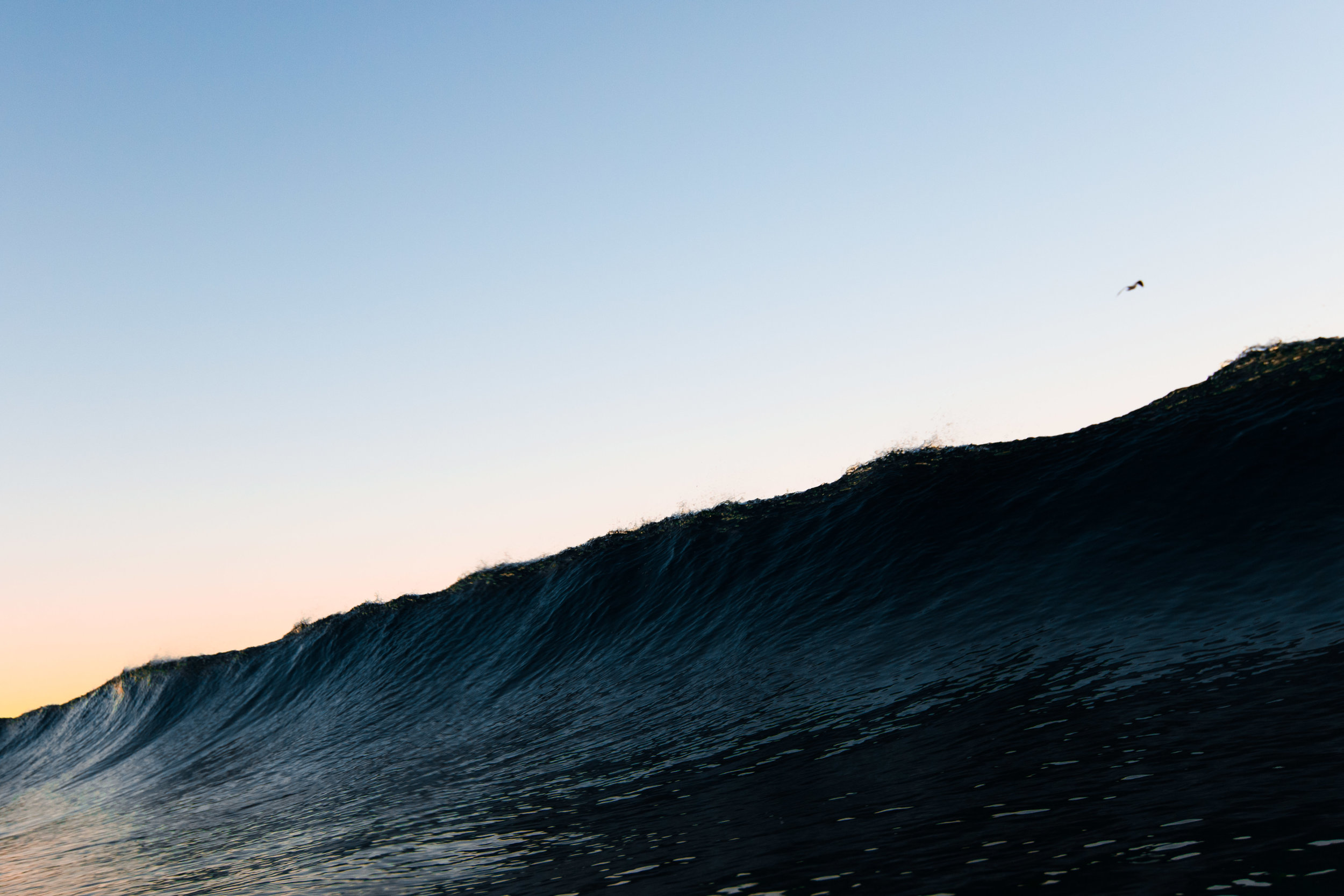 waves (18 of 29).jpg