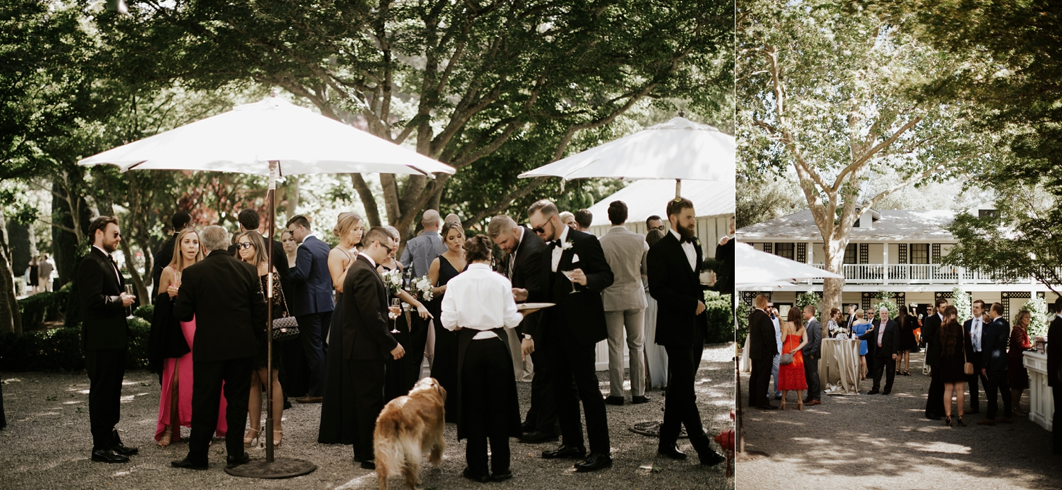 Rando Napa Wedding_1666.jpg