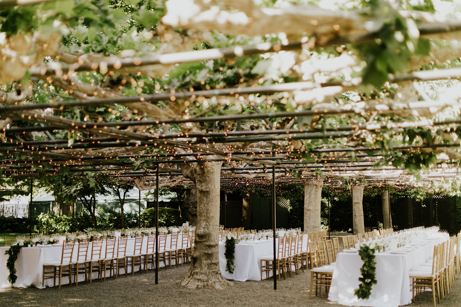 Rando Napa Wedding_1683.jpg