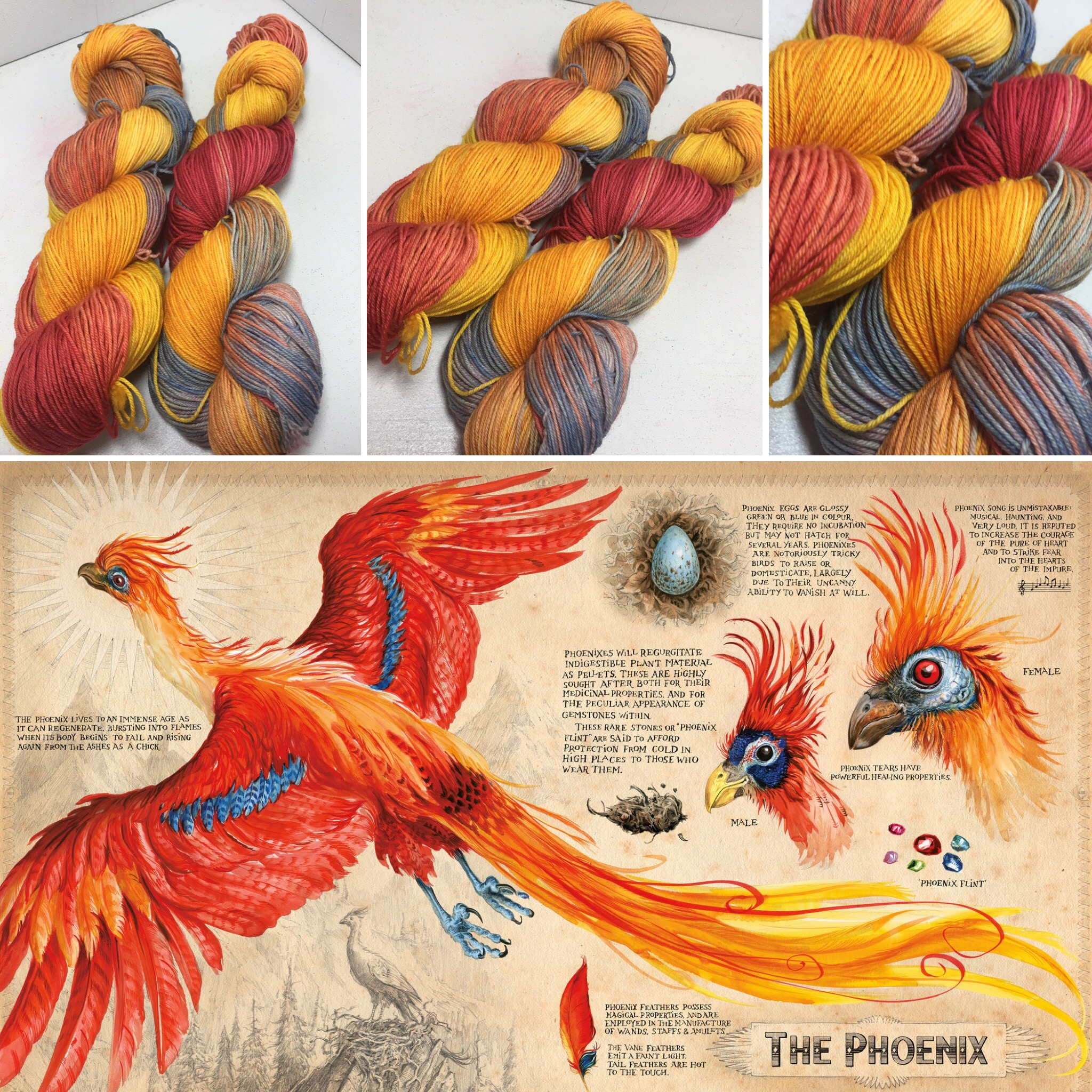 https://www.etsy.com/listing/476463111/fawkes-the-phoenix-100-superwash-merino