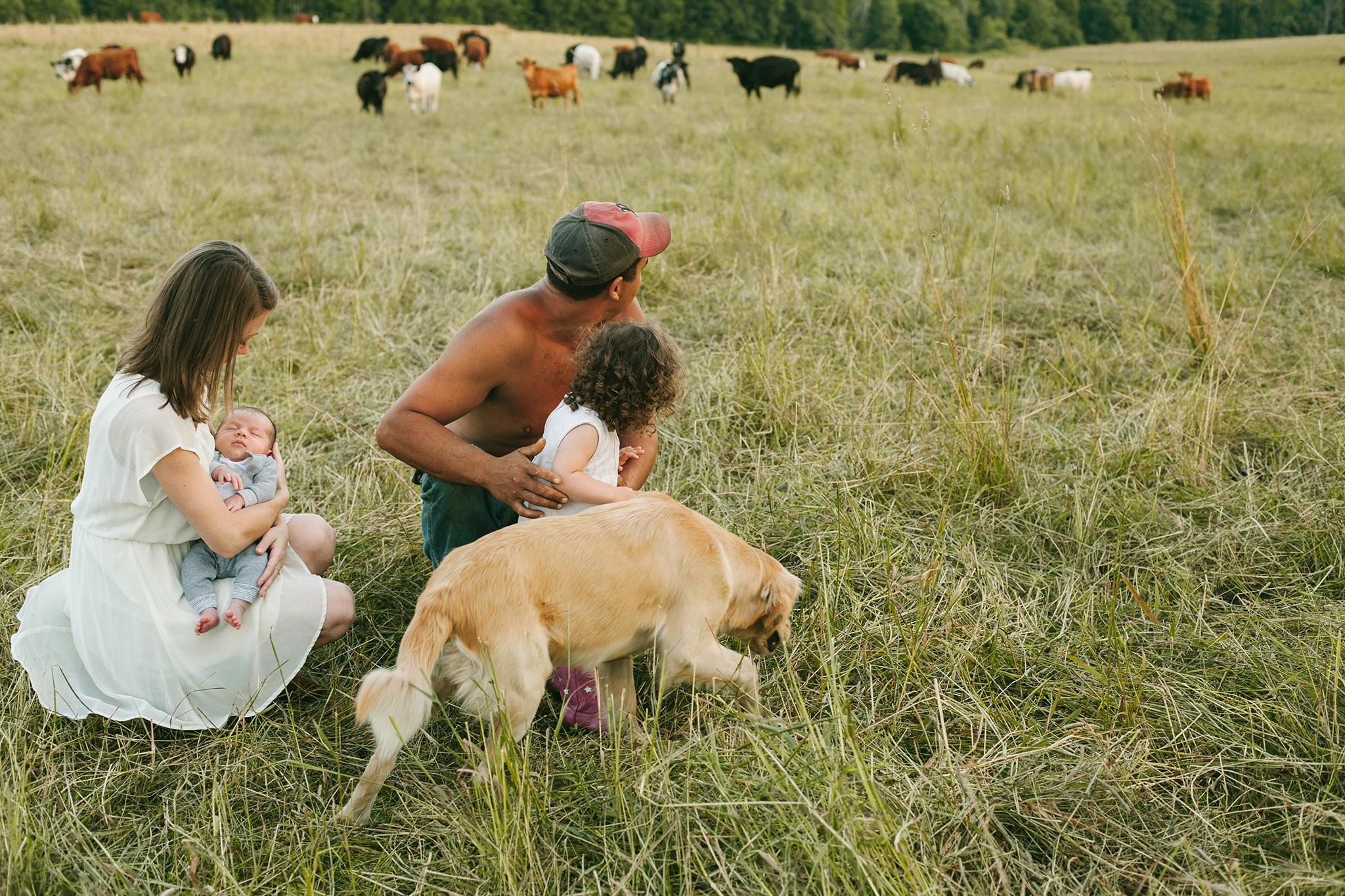 vt farming family in cow field web.jpg
