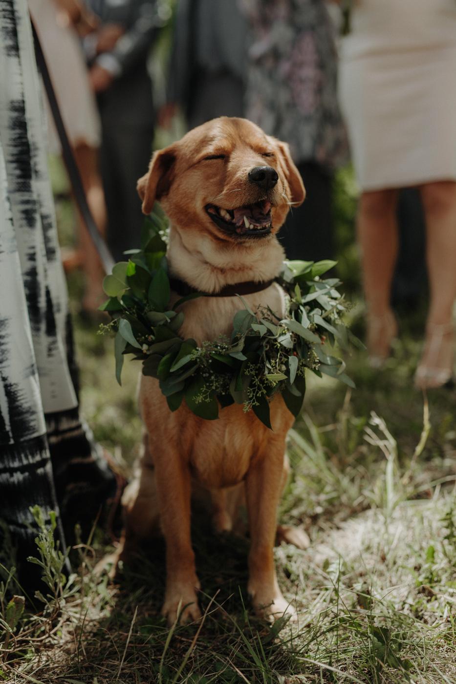 woods-walk-trail-crested-butte-colorado-wedding-13.jpg