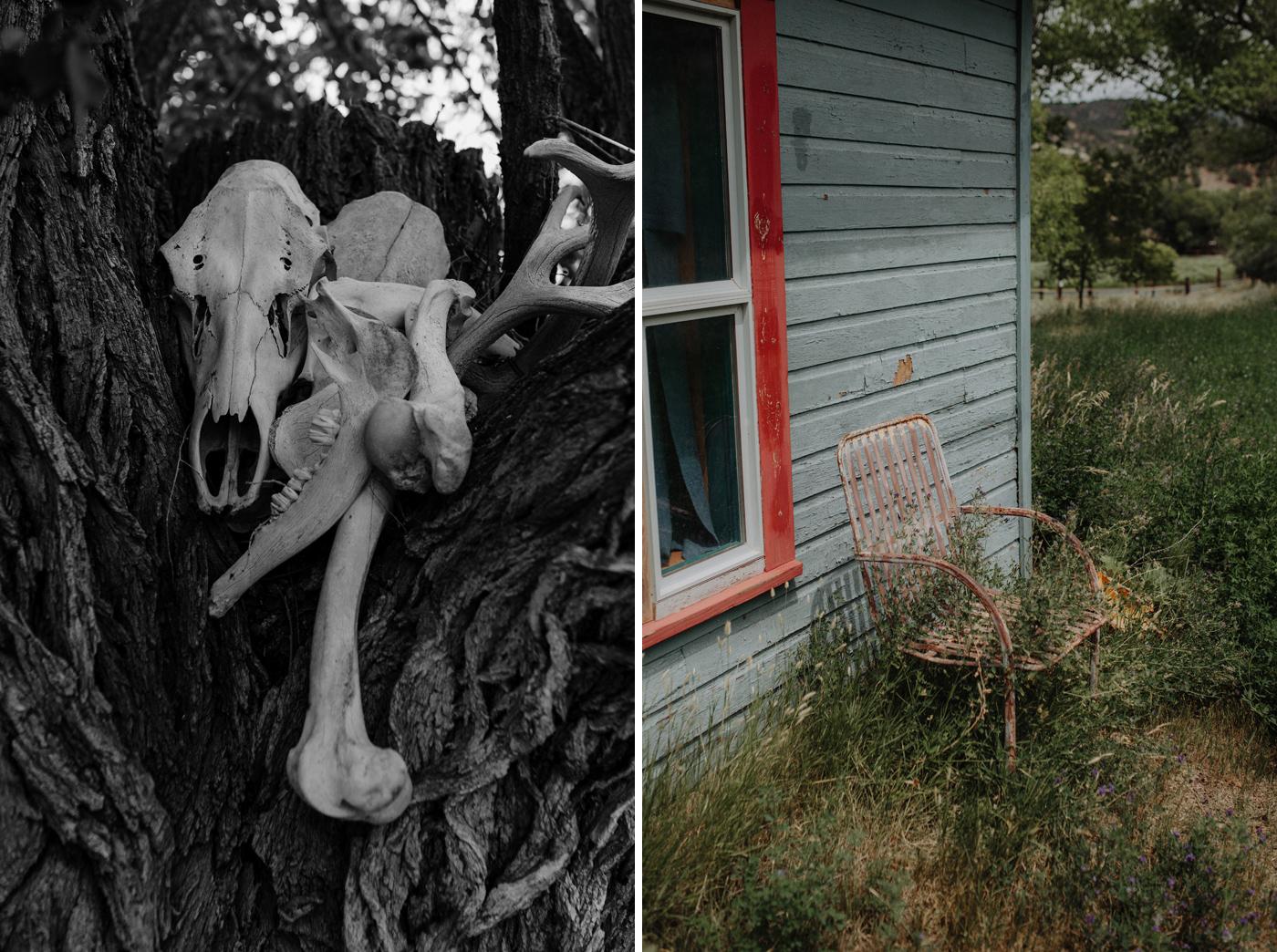 004-jones-max-colorado-ranch-engagement-photos.jpg