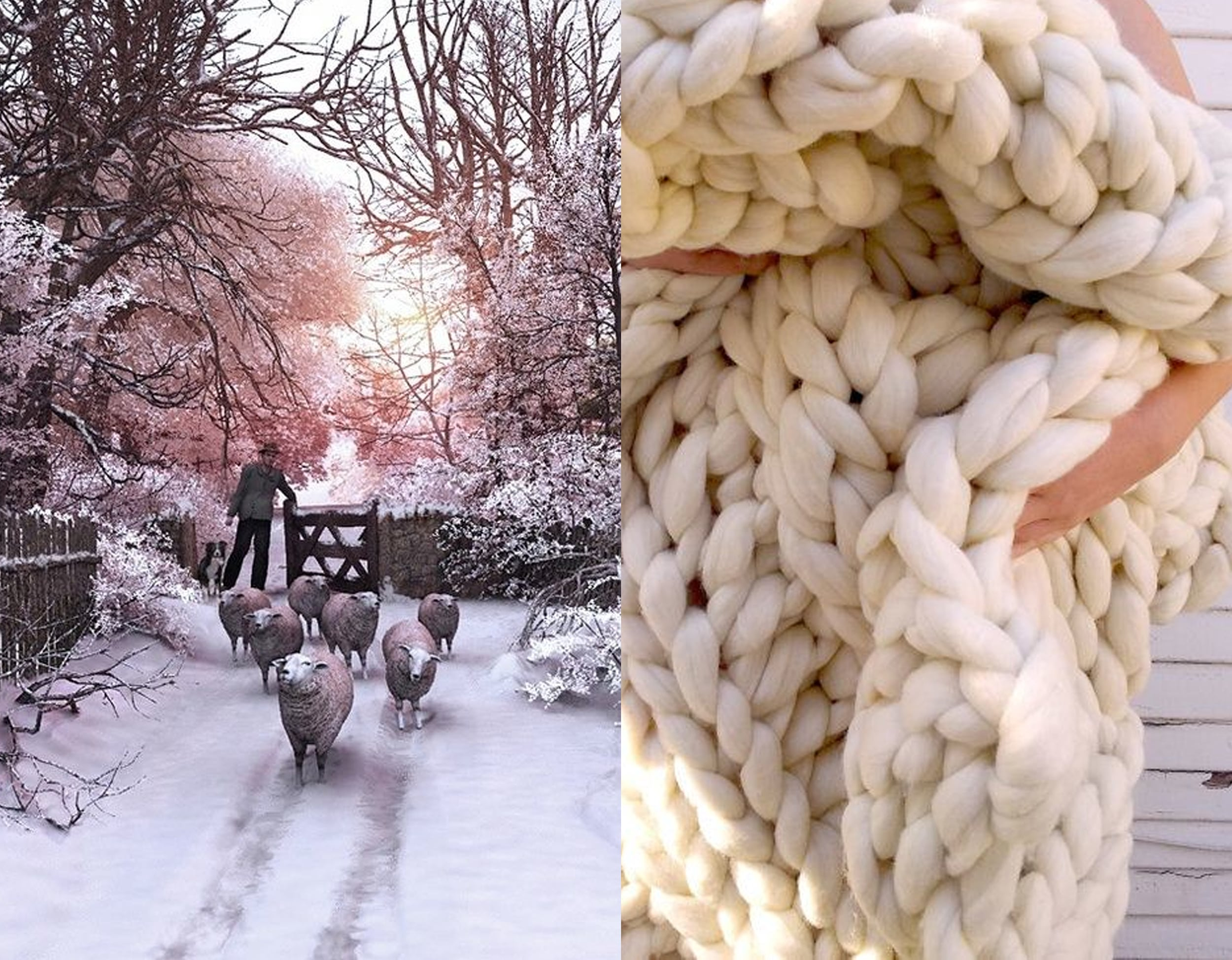 image via  Pinterest  - knitted blanket  Lily and Peabody