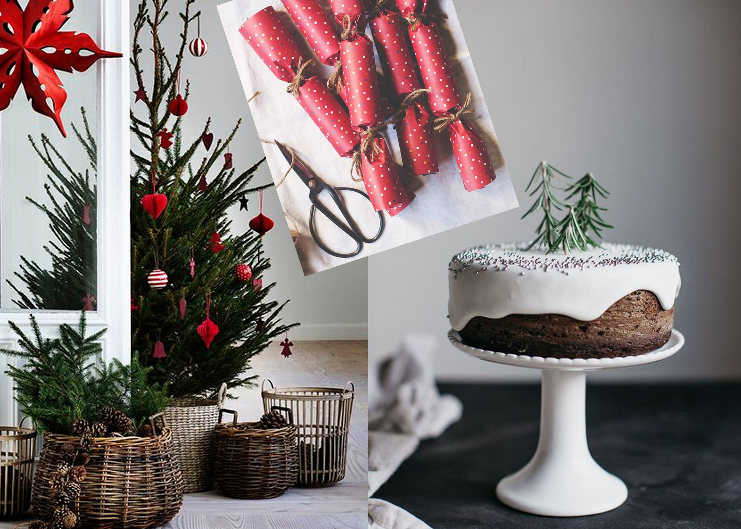 Christmas tree via  Pinterest  - gingerbread cake (with recipe)  Erin Made This  - fire crackers via  Meg and Cook  -