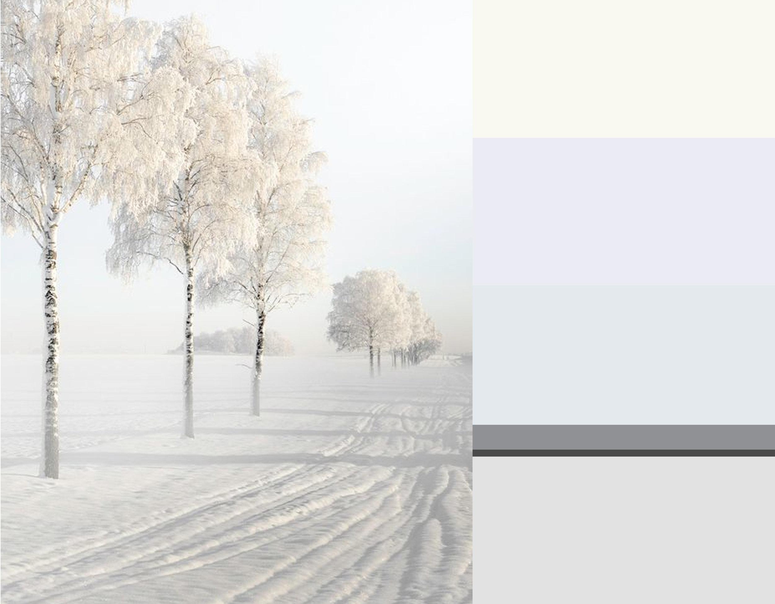 winter image via  Expressions of nature  - colors from top down Milk  Zoffany  - Great White 2006  Farrow & Ball  - Quarter La Seine  Zoffany  - Mid Lead Colour 114  Little Greene  - Railings 31  Farrow & Ball  - Dimpse 277  Farrow & Ball
