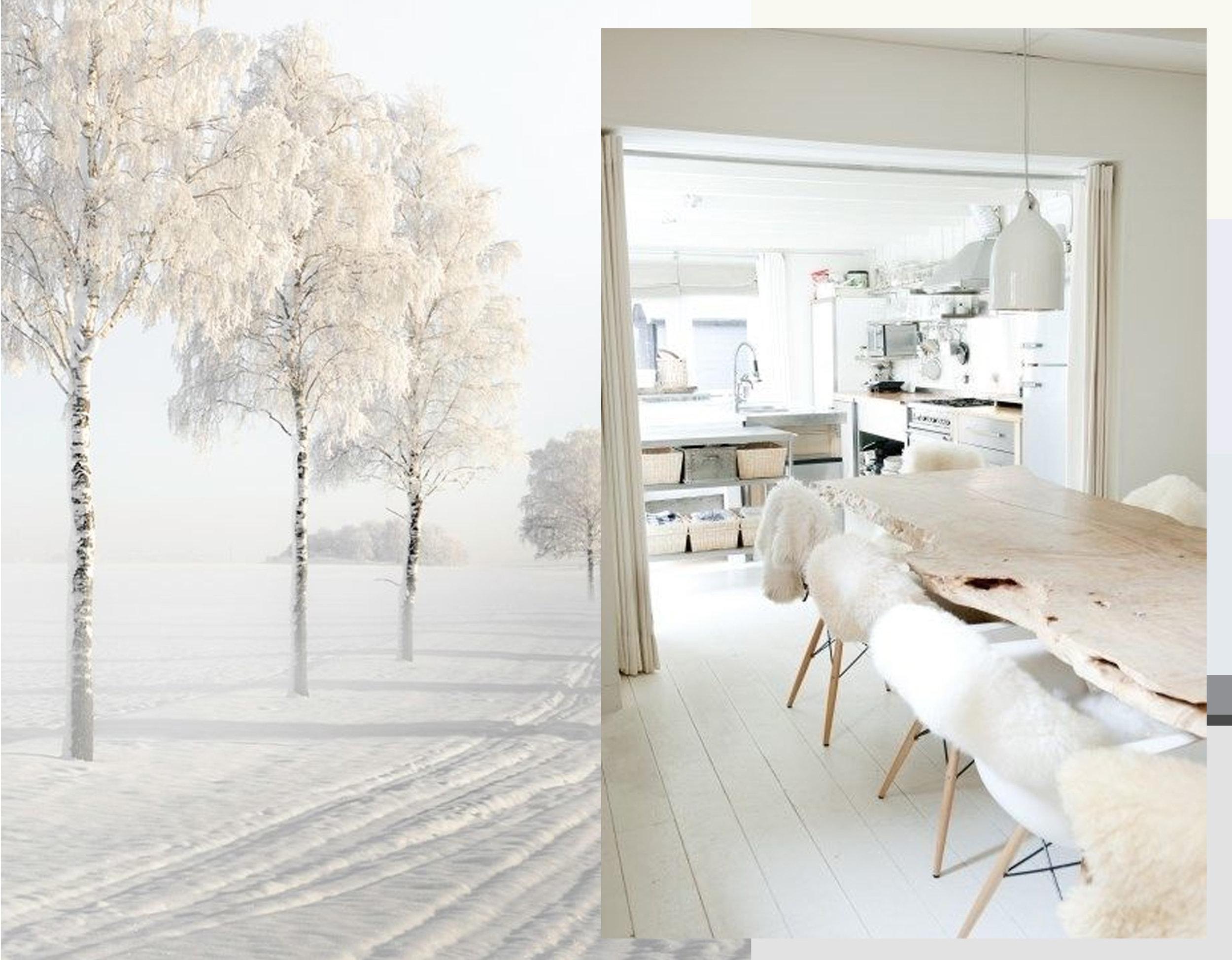 winter image via  Expressions of nature  - white interior via  Looks Like White