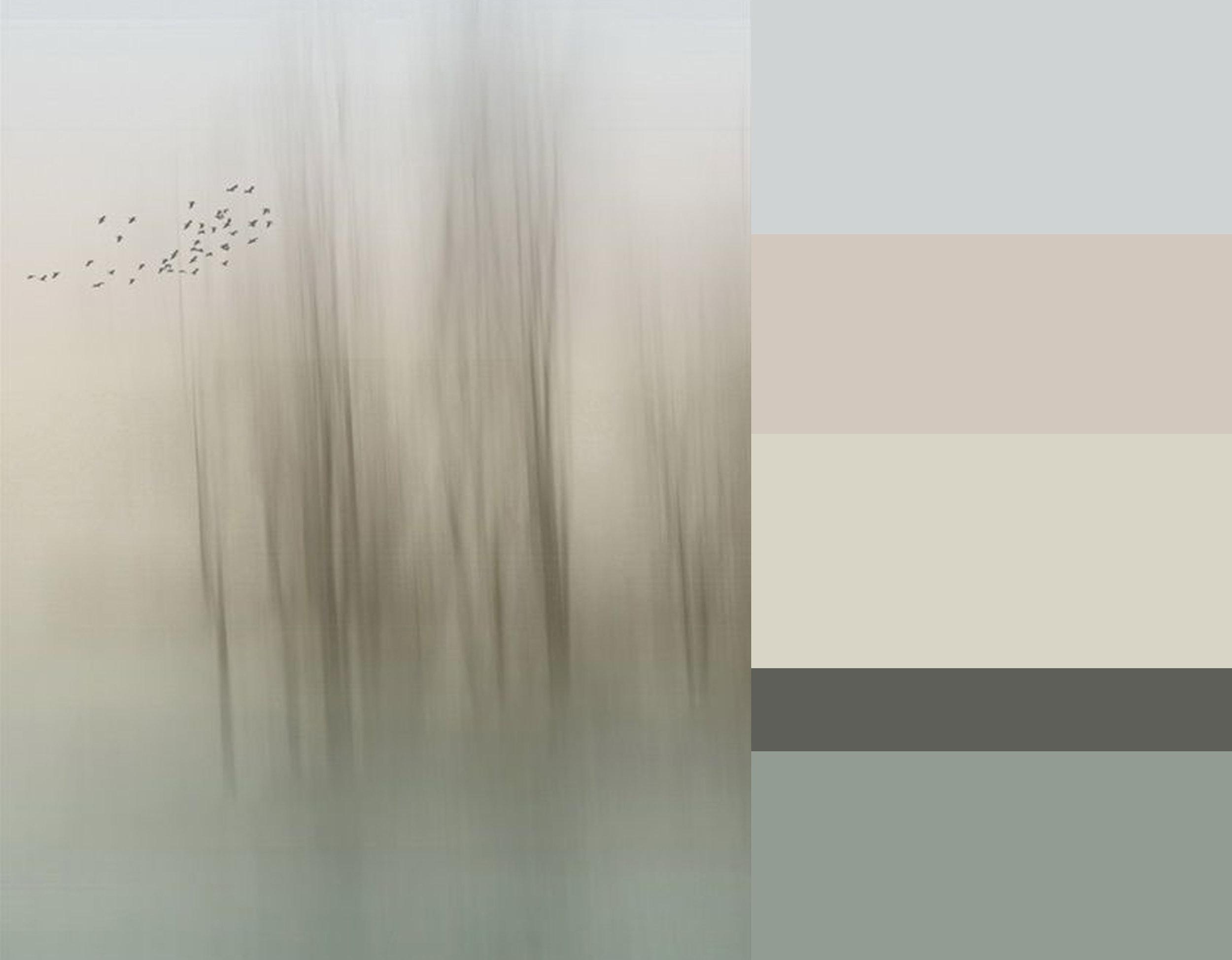Breeze of Winter via  Fotoblur  - colors from top down Skylight 205  Farrow & Ball  - Coquette Lt. 146  Sanderson  - Silverflake 7  Sanderson  - Bastille 165  Sanderson  - Double la Seine  Farrow & Ball