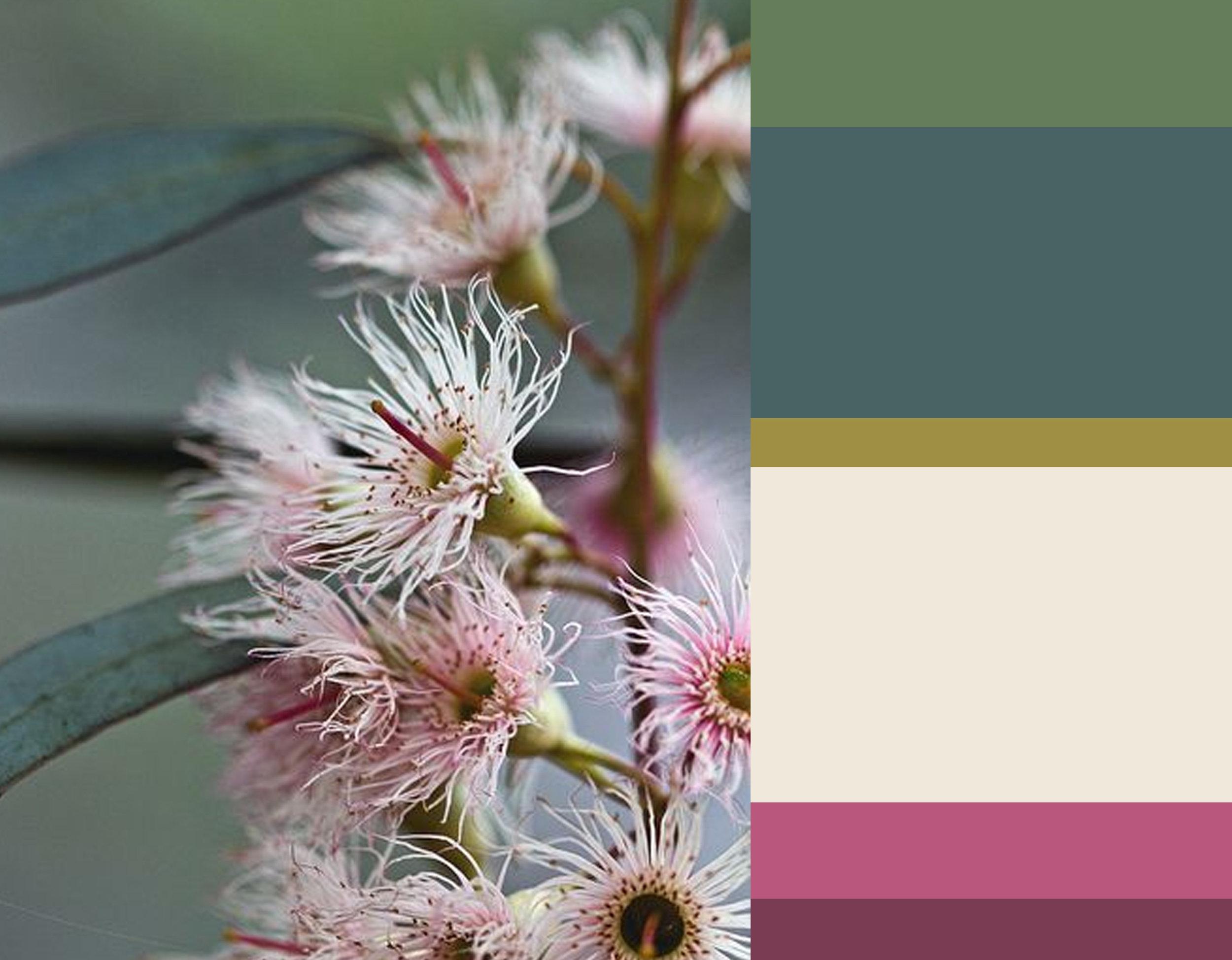flower image via  Pinterest