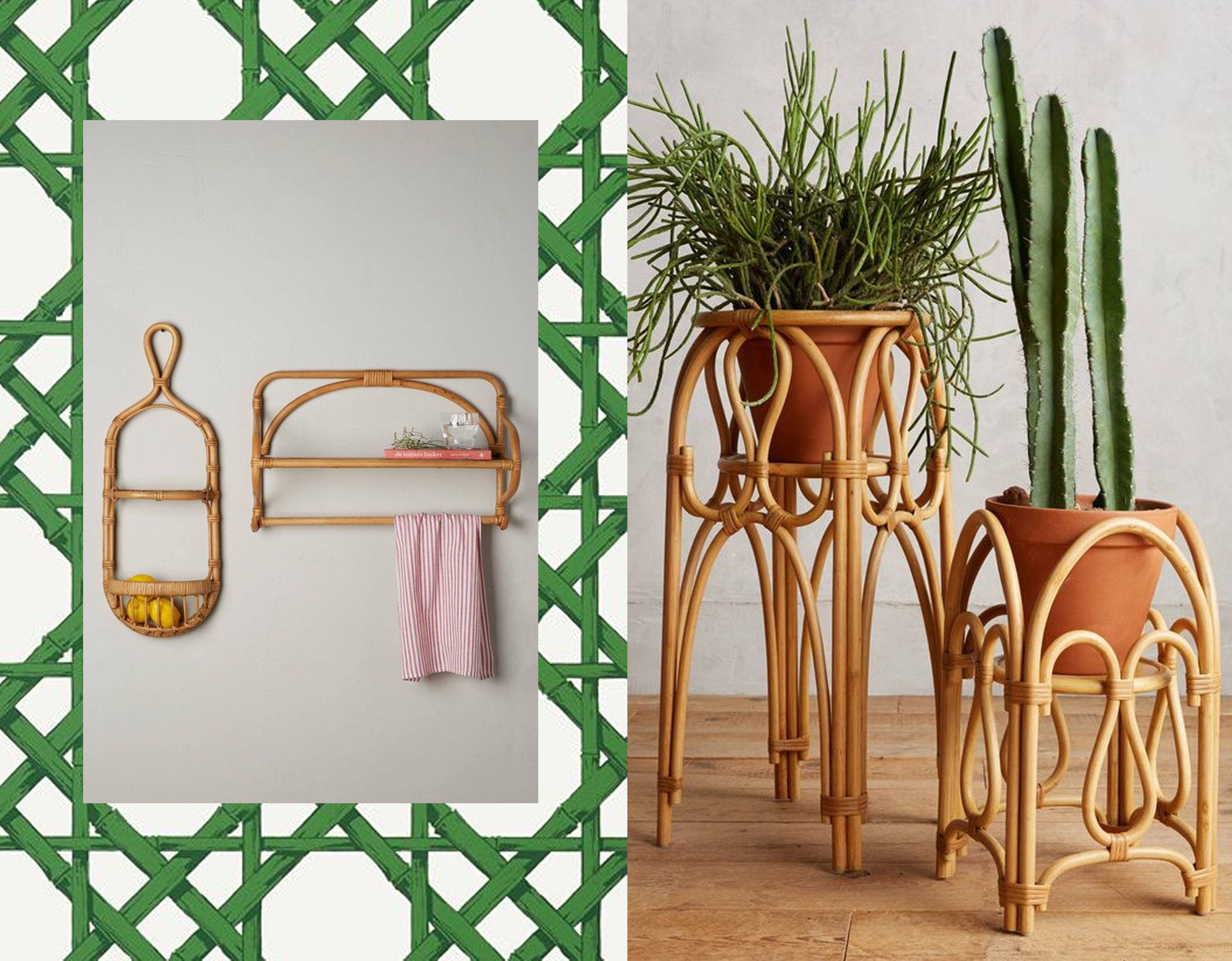 wallpaper  Thibaut  - rattan shelve  Anthropologie  - plant stand  Anthropologie