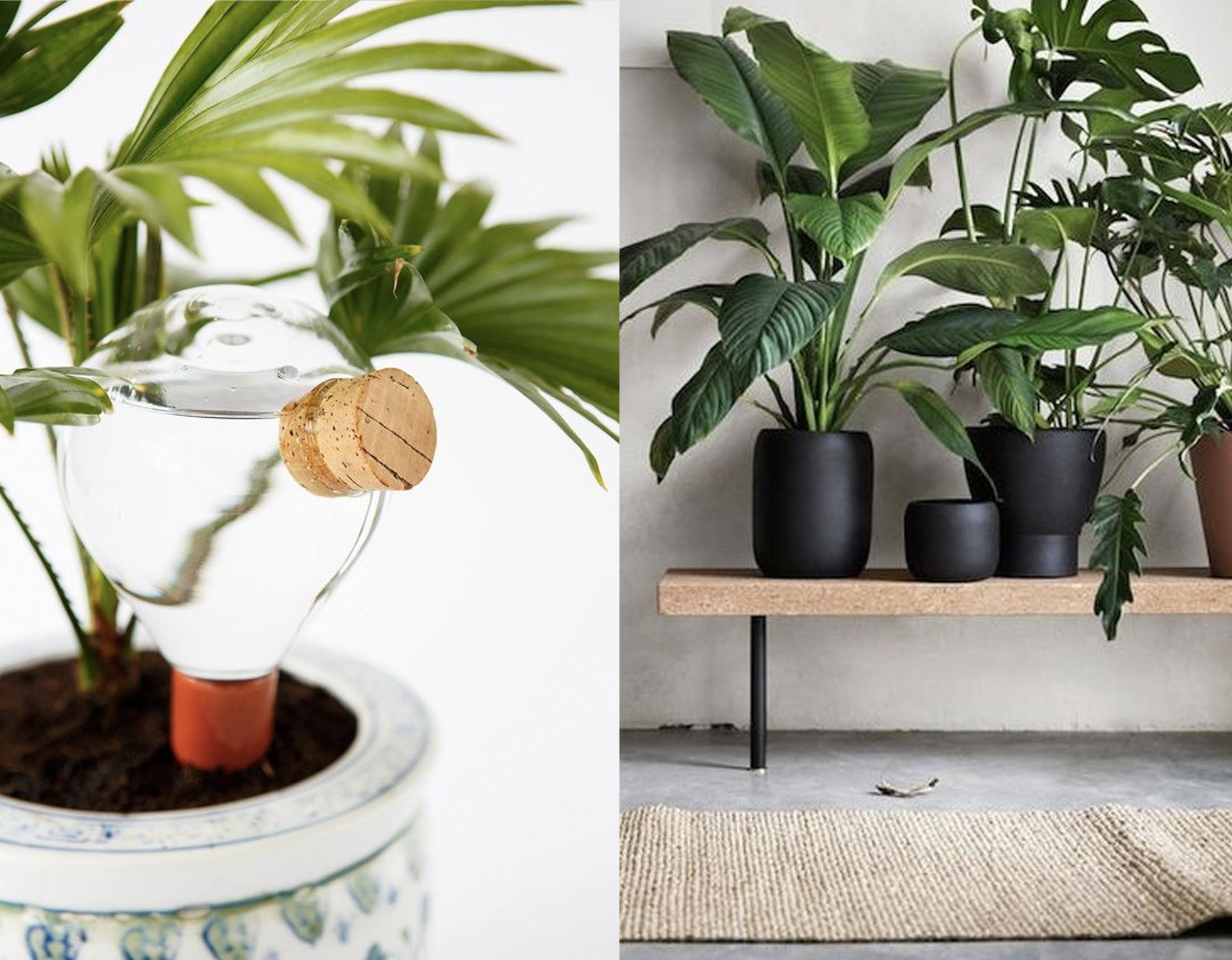 plant watering system with cork via  Crowdyhouse  - Sinnerlig bench by Isle Crawford via  Voges Paris