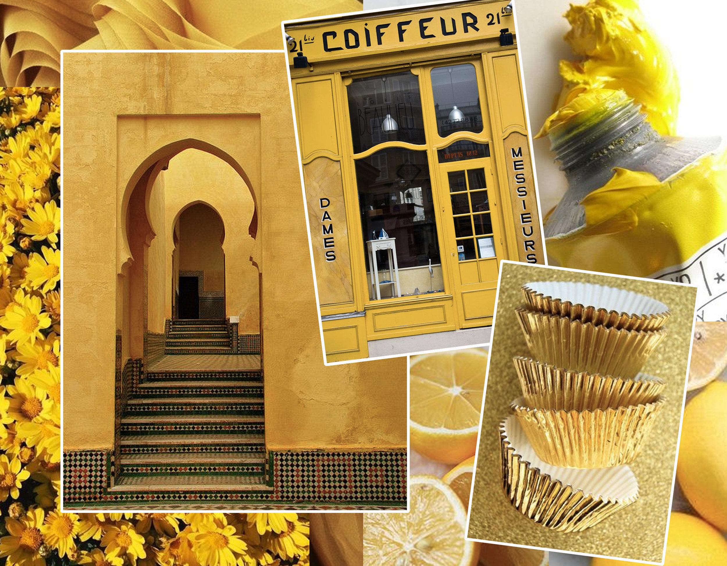 flowers via  Alurium  - architectural image via  Flickr  - coiffeur via  Flickr  - lemons via  The Small Things  - paint via  Pinterest