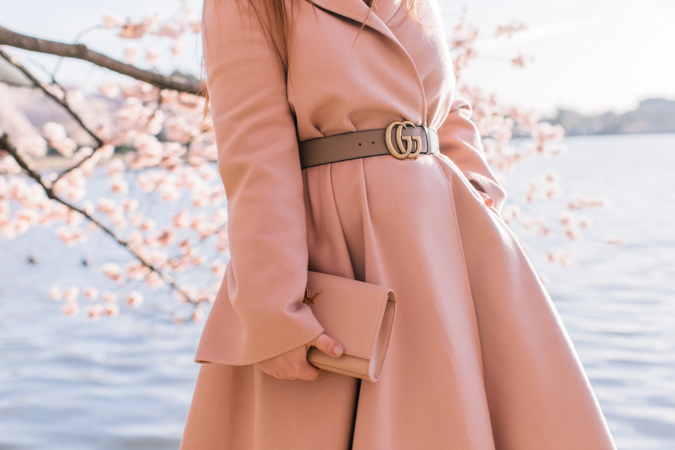 dc_cherry_blossoms-6.JPG