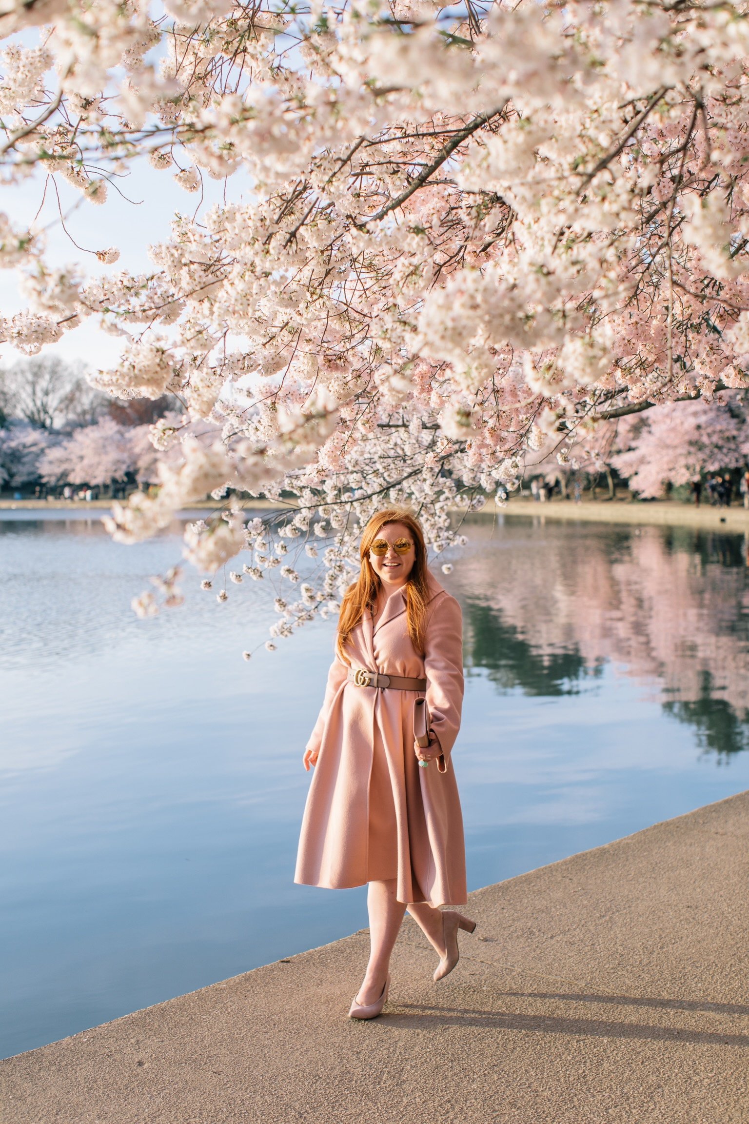 dc_cherry_blossoms-2.JPG