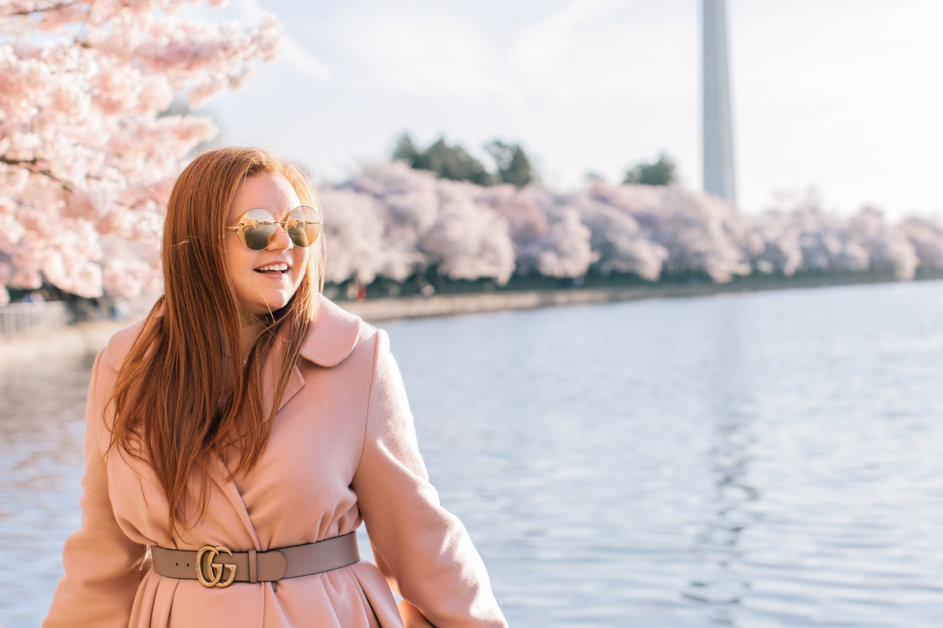 dc_cherry_blossoms-3.JPG