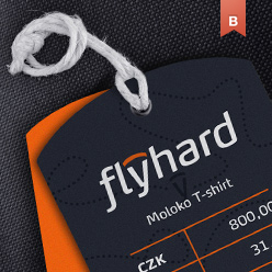 Flyhard corporate indetity design