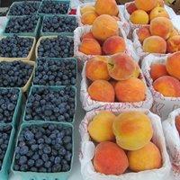 farm-fruit.jpg