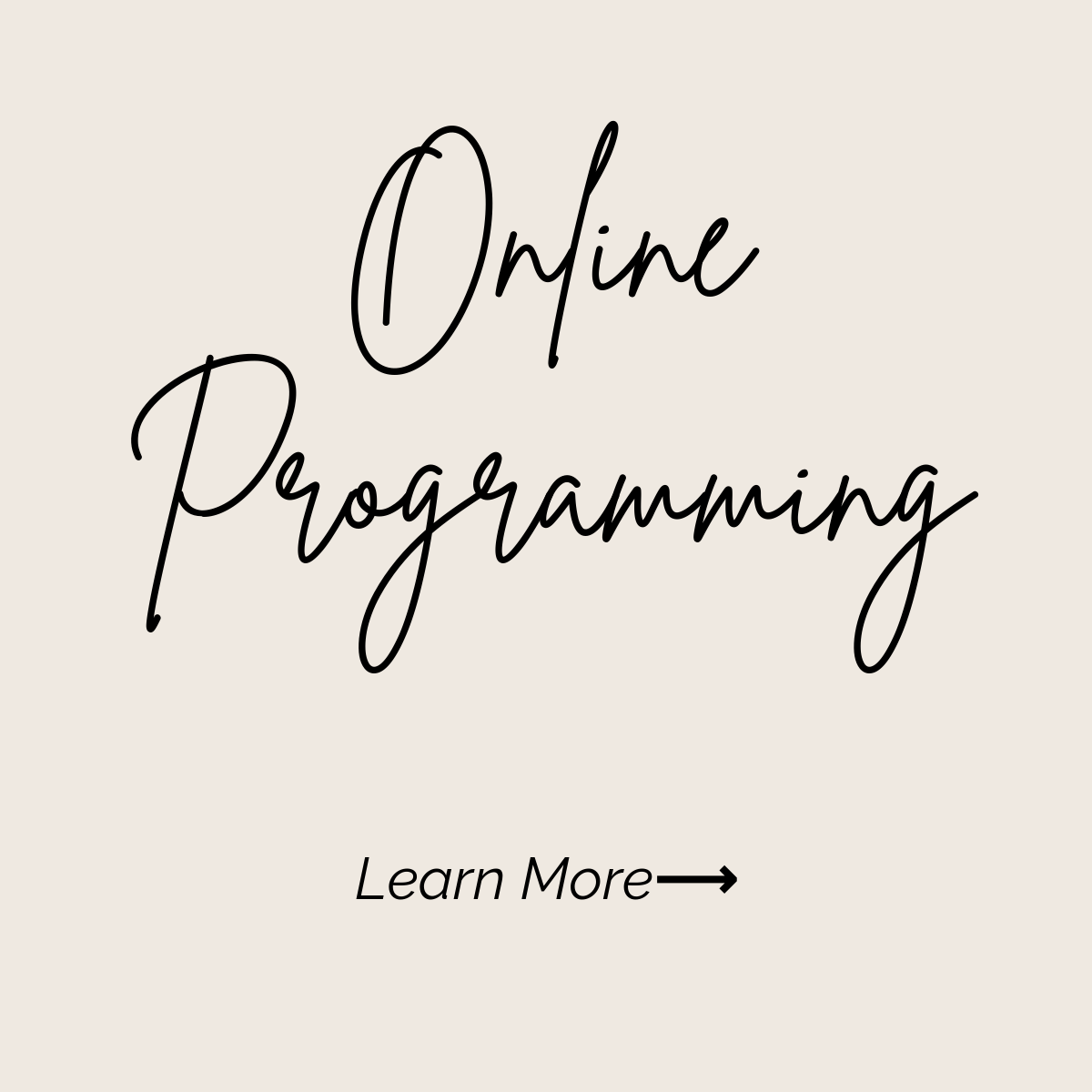 online programming learn more.png