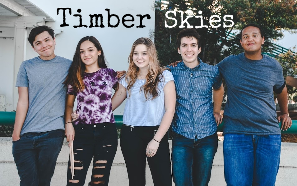 TIMBER SKIES